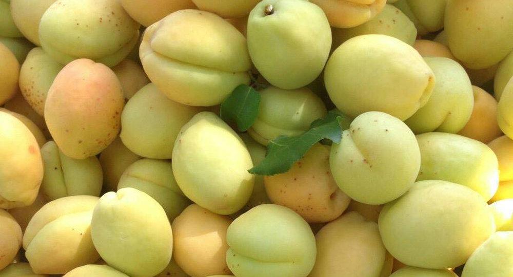 Минсельхоз Армении пообещал урожайный год