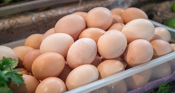 Яйцо, яйца