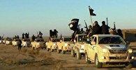 Колонна автомобилей с боевиками Исламского государства на пути из Сирии в Ирак. Архивное фото
