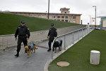 Аэропорт Звартноц после сообщения о бомбе