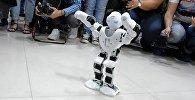 Армянский робот танцует шалахо и народные танцы