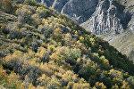 Горы Большого Кавказа