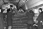 Погрузка в самолет гуманитарного груза для людей из Армении, оставшихся без жилья после землетрясения