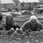 Захоронение жертв землетрясения в Армении