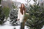 Sputnik Армения рассказывает о том, как правильно выбрать новогоднюю елку