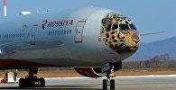 Лайнер с изображением дальневосточного леопарда совершил первый рейс во Владивосток