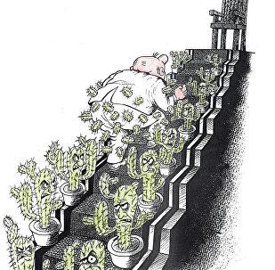 Карьерная лестница или путь наверх