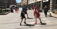 Юные боксеры
