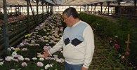 Гарик Амян