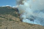 Пожар в Хосровском лесу