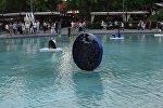 Образцы современного искусства украсили Лебединое озеро