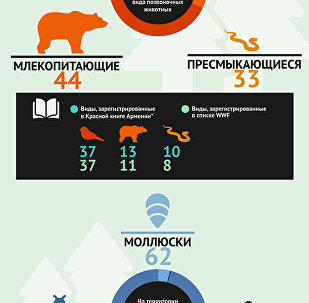 Фауна Хосровского леса