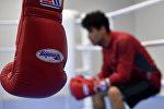 Бокс, боксерские перчатки