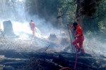 Армянские пожарные при тушении пожара в Грузии