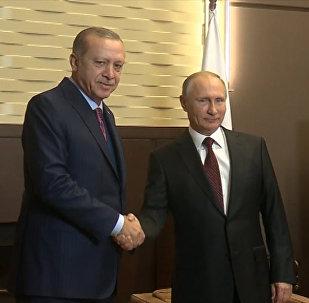 Встреча в Сочи Владимира Путина и Реджепа Эрдогана