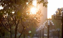 осень в Ереване