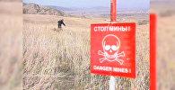 В Нагорном Карабахе всегда проживало много уроженцев России